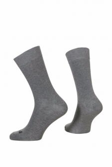 SH01503 - Scholl Everyday Men Crew_grey